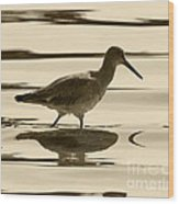 Early Morning In The Moss Landing Harbor Picture Of A Willet Wood Print by Artist and Photographer Laura Wrede