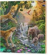 Elephant Falls Wood Print by Jan Patrik Krasny