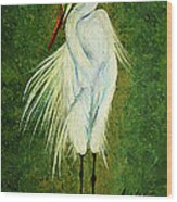Ellie Egret Wood Print by Adele Moscaritolo
