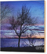 End Of Day Wood Print by Betty LaRue