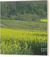 English Countryside Wood Print by Ann Horn