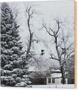 Estherville Barn Wood Print by Julie Hamilton