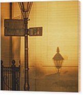 Evening Shadow In Jackson Square Wood Print by Brenda Bryant