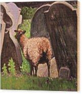 Ewe Spooked? Wood Print by Janet Greer Sammons