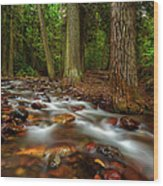 Explorer Of The Dark 3 Wood Print by Stuart Deacon