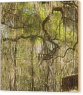 Fabulous Spanish Moss Wood Print by Christine Till