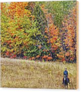 Fall Hack Wood Print by Peter Lindsay