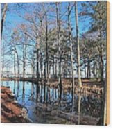 Fall Reflections And Shadows  Wood Print by Valia Bradshaw