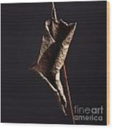 Fallopia Japonica Wood Print by Bernard Jaubert