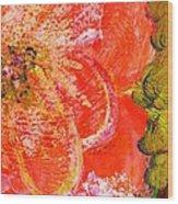Fantasia With Orange  Wood Print by Anne-Elizabeth Whiteway