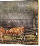 Farm - Cow - A Couple Of Cows Wood Print by Mike Savad