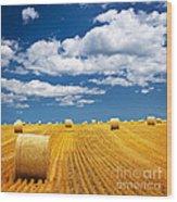 Farm Field With Hay Bales Wood Print by Elena Elisseeva