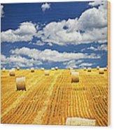 Farm Field With Hay Bales In Saskatchewan Wood Print by Elena Elisseeva