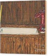 Farm Sink Wood Print by Regan J Smith