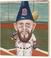 Fenway's Garden Gnome Wood Print by Jack Skinner