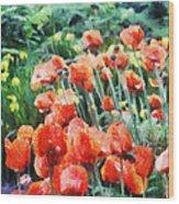 Field Of Flowers Wood Print by Jeff Kolker