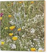 Field Of Flowers Wood Print by Artist and Photographer Laura Wrede