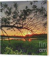 Fiery Swamp Sunset Wood Print by Deborah Smolinske