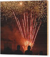 Fireworks Wood Print by Vonnie Murfin