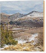 First Snow At Treeline Wood Print by Adam Pender