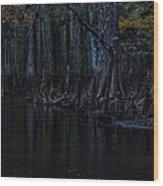 Fisheating Creek 28 Wood Print by Carol Kay