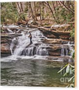 Fishing Mill Creek Falls In West Virginia Wood Print by Dan Friend