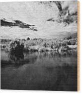 Flooded Grasslands And Mangrove Forest In The Florida Everglades Wood Print by Joe Fox