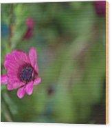 Flower Bokeh  Wood Print by Jordan Rusin