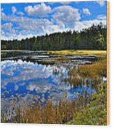 Fly Pond In The Adirondacks II Wood Print by David Patterson