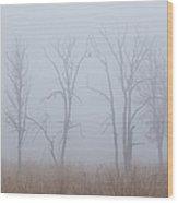 Fog Wood Print by Angie Vogel