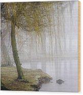 Foggy Lake Morning Wood Print by Vicki Jauron