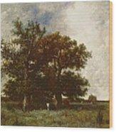 Fontainebleau Oak Wood Print by Jules Dupre