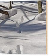 Footprints In The Snow Wood Print by Louise Heusinkveld