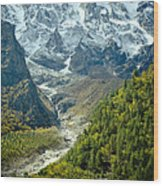 Forest And Mountains In Himalayas Wood Print by Raimond Klavins