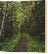 Forest Beckons Wood Print by Mike Reid