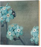 Forget Me Not 01 - S22dt06 Wood Print by Variance Collections