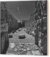 Fortress Of Masada Israel 2 Wood Print by Mark Fuller