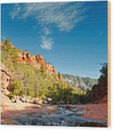 Free Flow At Oak Creek Wood Print by Silvio Ligutti