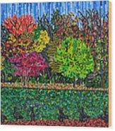 Freedom Park 1 Wood Print by Micah Mullen