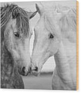 Friends Iv Wood Print by Tim Booth