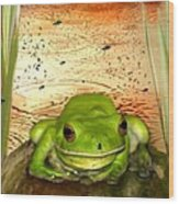 Froggy Heaven Wood Print by Holly Kempe