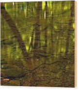 From River Rocks To Forest Reflections Wood Print by Adam Jewell