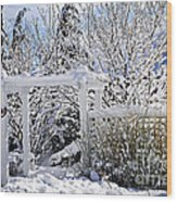 Front Yard Of A House In Winter Wood Print by Elena Elisseeva