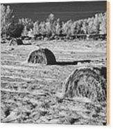 frozen snow covered hay bales in a field Forget Saskatchewan Canada Wood Print by Joe Fox
