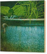 Gardenscape Wood Print by Amy Weiss