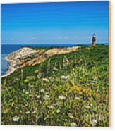 Gay Head Light And Cliffs Wood Print by Mark Miller