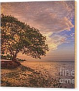 Gentle Whisper Wood Print by Marvin Spates