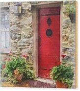 Geraniums By Red Door Wood Print by Susan Savad