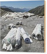 Glacier Protection Wood Print by Science Photo Library