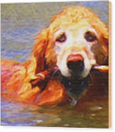 Golden Retriever - Painterly Wood Print by Wingsdomain Art and Photography